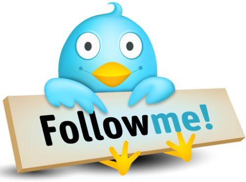 Falsos seguidores Twitter